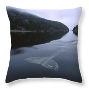 Gray Whale Clayoquot Sound Throw Pillow