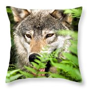 Gray Wolf In The Woods Throw Pillow