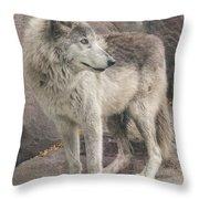 Gray Wolf Profile Throw Pillow