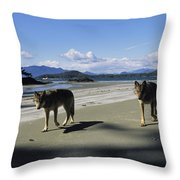 Gray Wolves On Beach Throw Pillow
