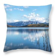 Grayling Bay Throw Pillow