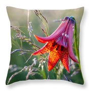 Gray's Lily Roan Mountain Highlands Throw Pillow