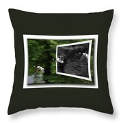 Grayscale To Color Throw Pillow