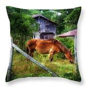Grazin' In The Grass Throw Pillow