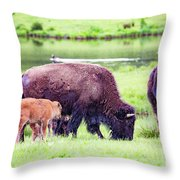 Grazing Bisons Throw Pillow