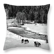 Grazing Bw Throw Pillow