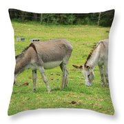 Grazing Donkeys Throw Pillow