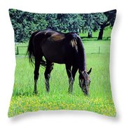 Grazing Horse In The Flowers Throw Pillow