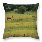 Grazing Horse Throw Pillow