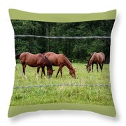 Grazing Horses - Cades Cove - Great Smoky Mountains Tennessee Throw Pillow