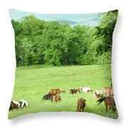 Grazing In The Morning Throw Pillow