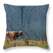 Grazing In Winter Throw Pillow