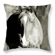 Grazing Mare - Southern Indiana Throw Pillow