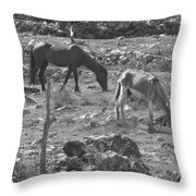 Grazing Throw Pillow by Michael Peychich