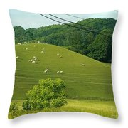 Grazing On The Mountain Side Throw Pillow