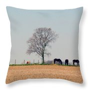 Grazing Quietly Throw Pillow