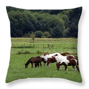 Grazing. Throw Pillow