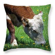 Grazing Time Throw Pillow