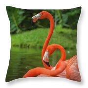 Great Birds Throw Pillow