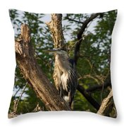 Great Blue 2 Throw Pillow