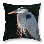 Great Blue At Rest Throw Pillow