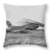 Great Blue Egret In Flight Throw Pillow