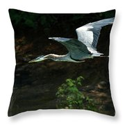 Great Blue Fly-by II Throw Pillow