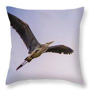 Great Blue Gliding Throw Pillow