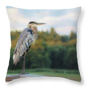 Great Blue Great View Great Meadows Throw Pillow