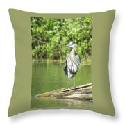 Great Blue Hair Throw Pillow