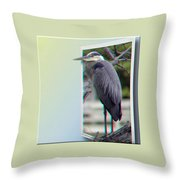 Great Blue Heron - Red-cyan 3d Glasses Required Throw Pillow