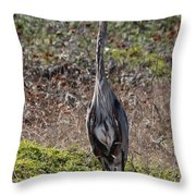 Great Blue Heron - 11 Throw Pillow