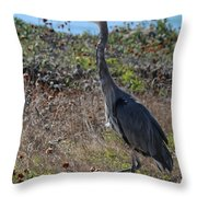 Great Blue Heron - 8 Throw Pillow