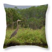 Great Blue Heron Along Cedar Creek Throw Pillow