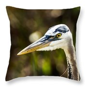 Great Blue Heron At Green Cay Throw Pillow
