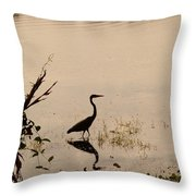 Great Blue Heron At Rollins Throw Pillow