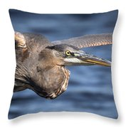 Great Blue Heron Close-up Throw Pillow