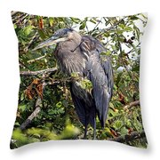Great Blue Heron In A Tree Throw Pillow