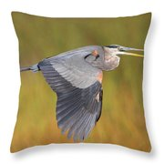 Great Blue Heron In Flight Throw Pillow by Bruce J Robinson