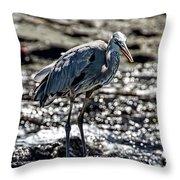 Great Blue Heron In Galapagos Throw Pillow