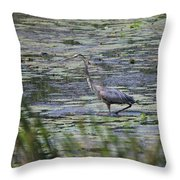 Great Blue Heron In Maine  Throw Pillow