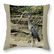 Great Blue Heron In Ozarks Throw Pillow