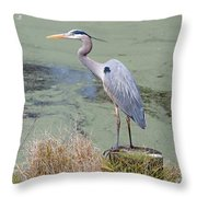 Great Blue Heron Near Pond Throw Pillow