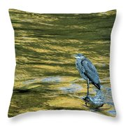 Great Blue Heron On A Golden River Throw Pillow