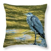 Great Blue Heron On A Golden River Vertical Throw Pillow