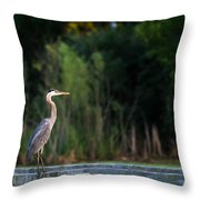 Great Blue Heron On A Handrail Throw Pillow