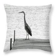 Great Blue Heron On Dock - Keuka Lake - Bw Throw Pillow