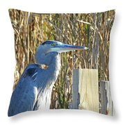 Great Blue Heron On Guard Throw Pillow