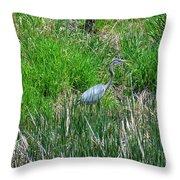 Great Blue Heron Series 1 Of 10 Throw Pillow