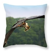 Great Blue Heron Spears Fish Throw Pillow